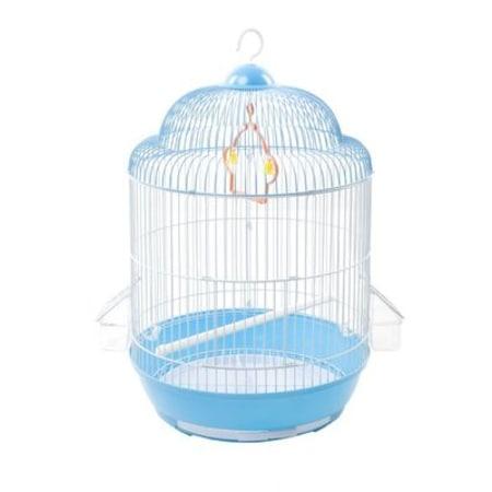 Kuş Kafesi Temizliği Nasıl Yapılır?