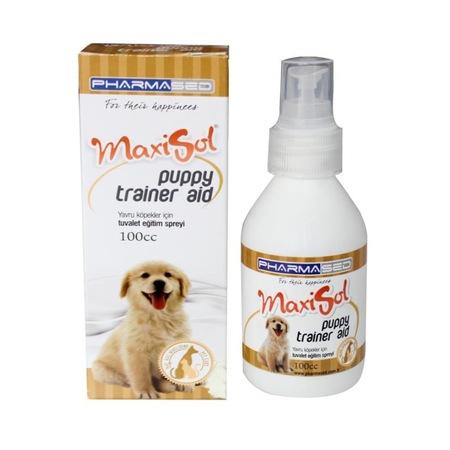 Köpeğinizin Cilt Sağlığı için Stronella ve Spray Collars