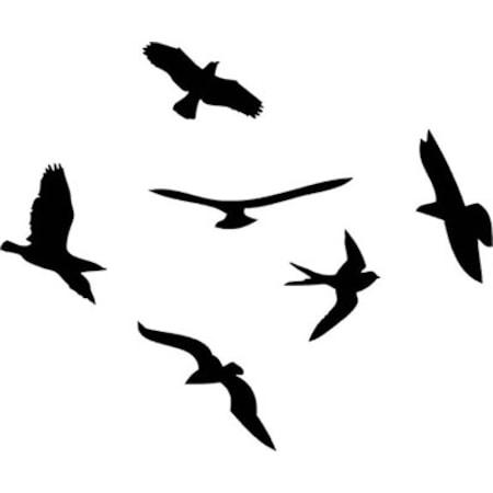 Kuşlar Stencil Boyama şablonu N11com