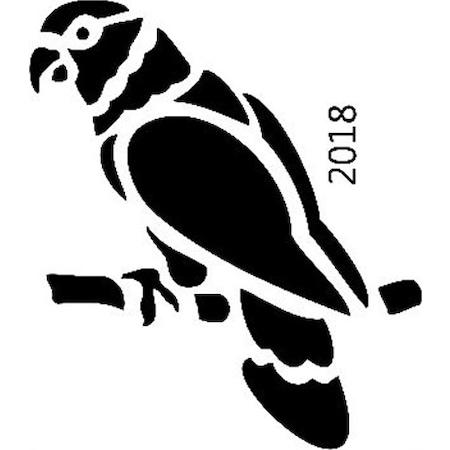 Papağan Stencil Boyama şablonu N11com