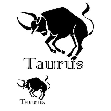 Taurus Boğa Stencil Boyama şablonu N11com