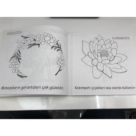 Top Meyve Ve Sebze Boyama Okulonce