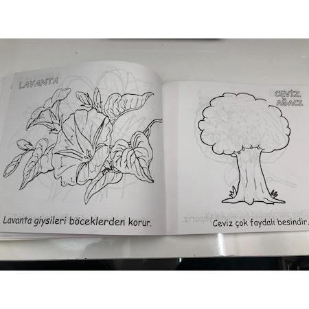 Egitici Ogretici Boyama Serisi Meyveler Sebzeler Boyama Kitabi