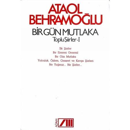 Ataol Behramoğlu şiir Kitapları Fiyatları N11com