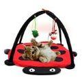 Kedi Malzemeleri Modelleri, Özellikleri ve Fiyatları
