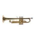 Trompet, Kornet ve Flugelhorn Modelleri, Özellikleri ve Fiyatları