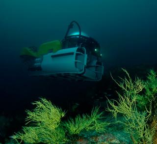 Denizaltı ile Keşif Turu