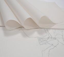 Eksiz Kağıtları