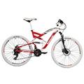 Kawasaki Bisiklet Alırken Dikkat Edilmesi Gerekenler