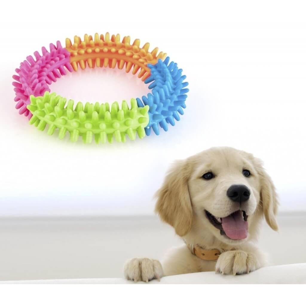 Köpek Eğitimi ve Köpek Oyuncakları