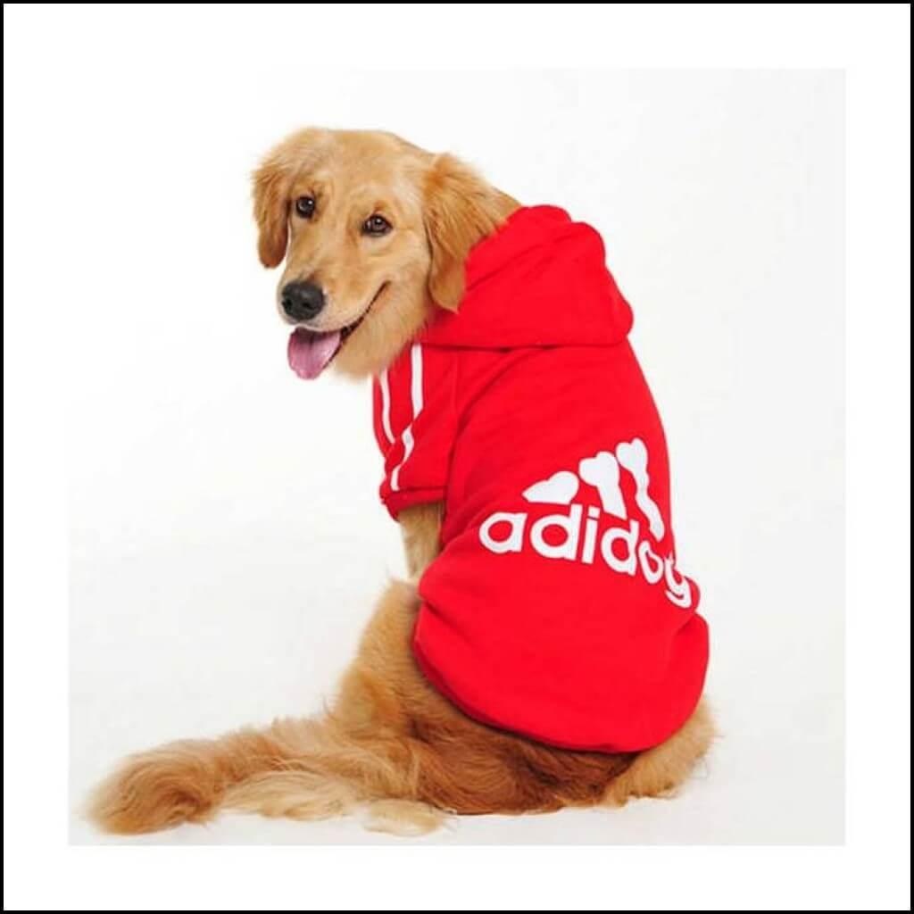 Köpek Kıyafetleri ve Köpek Kulübesi