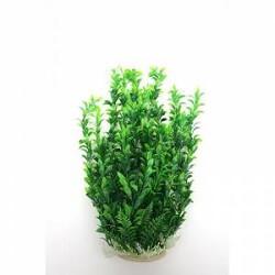 Akvaryum Yapay Bitki Kullanımı