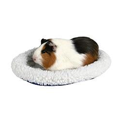 Hamster Yatağı ve Tavşan Yatağı Farkları Nelerdir?