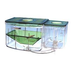 Balık Yavruluğu Önemi