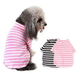 Köpek Kazak ve Gömlek Fiyatları