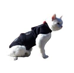 >Diğer Kedi Kıyafetleri Çeşitleri