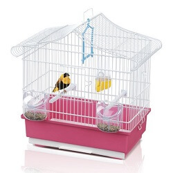 Kuş Kafesi ve Papağan Kafesi