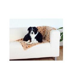 Köpek Battaniyesi Ne İşe Yarar?