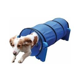 Köpeklerde Çeviklik Eğitimi İçin Hangi Ürünler Kullanılabilir?