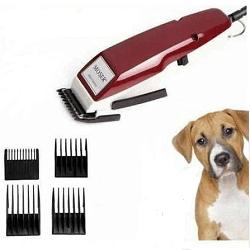 Köpek Deri & Tüy Bakımı Ürünleri