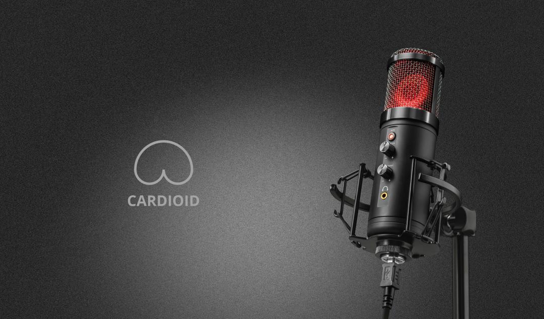 Kardioid Kayýt mikrofonu