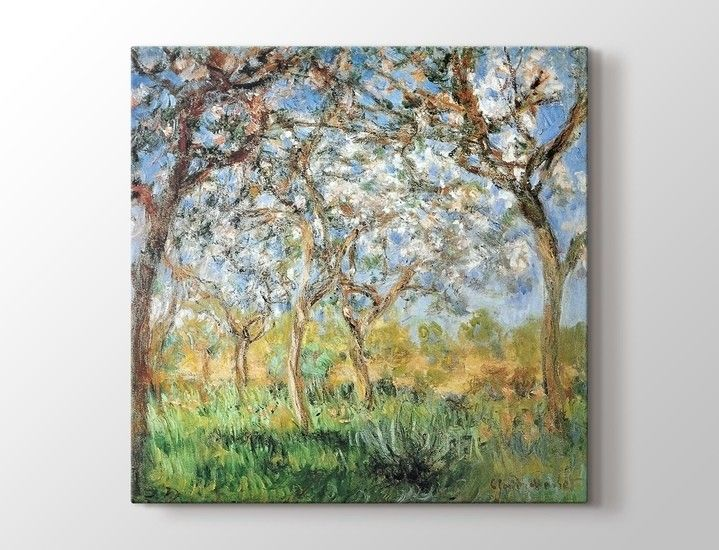 Claude Monet - Giverny in Springtime Tablo