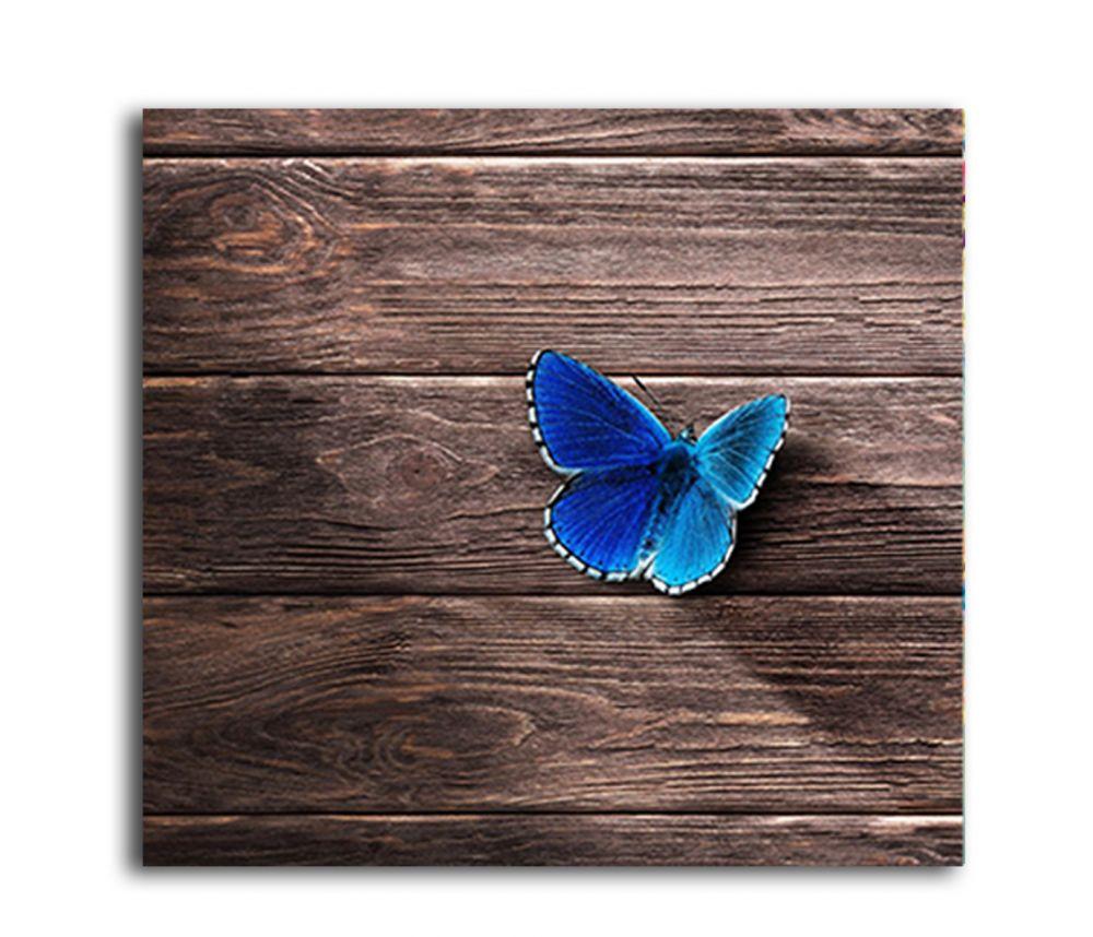 Mavi Kelebek Tablo